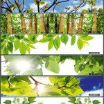 KATALOG_Sayfa_278_Görüntü_0001