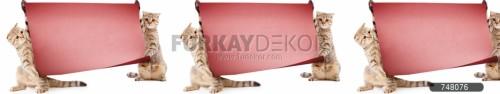 Mutfak-tezgah-arasi-cam-panel-model-furkay-HV-26-