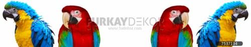 Mutfak-tezgah-arasi-cam-panel-model-furkay-HV-15