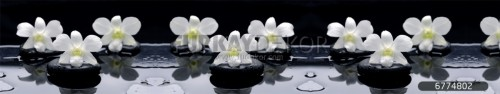 Mutfak-tezgah-arasi-cam-panel-model-furkay-FL-01
